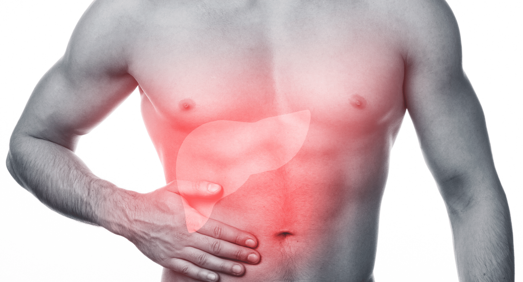 How liver dialysis helps patients to recover from acute liver failure?