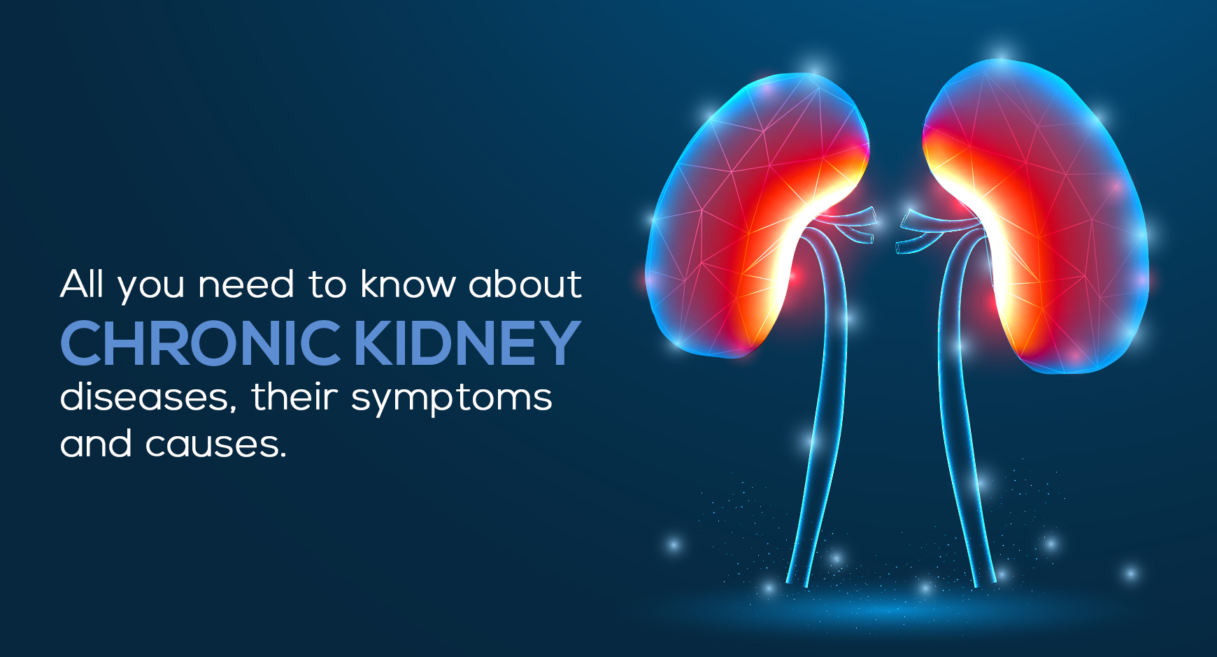 All you need to know about chronic kidney diseases, their symptoms, and causes